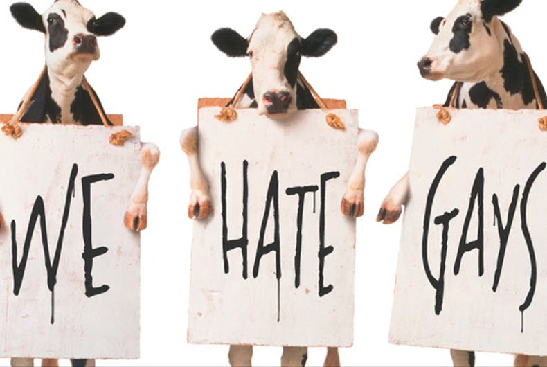 Rustled: Someone stole Chick-fil-A's mascot cows