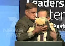 Qantas CEO gets pied for supporting marriage equality