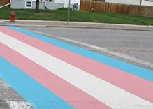 First ever permanent transgender pride flag crosswalk coming to Canada