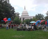 NOM held a hate rally and almost nobody showed up
