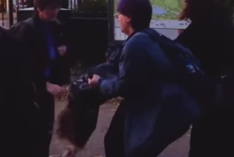 Trans activists and transphobic feminists violently clash at a protest