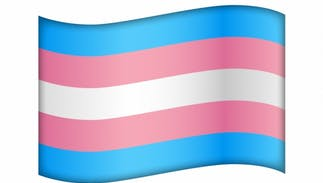 Apple's latest OS update has mosquito & magnet emojis, but there's still no trans flag