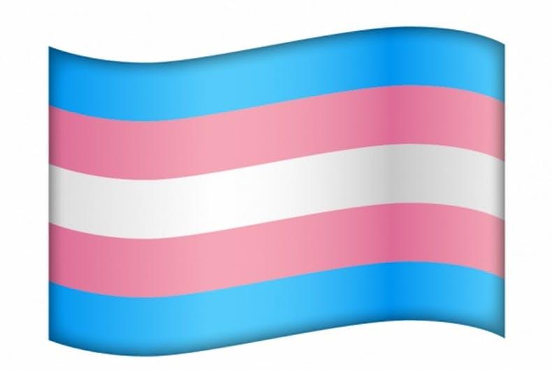 trans-flag-emoji1