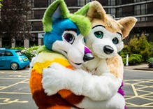 Man buys a hate group's domain and turns it into a gay furry site