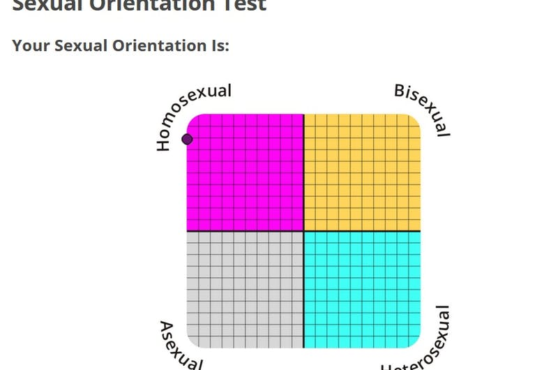 There's a ridiculous 'sexual orientation test' going viral  Don't