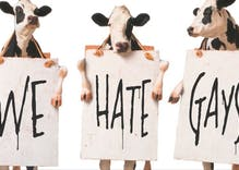 Montana Attorney General begs Chick-fil-A to open franchises there to protect religious freedom
