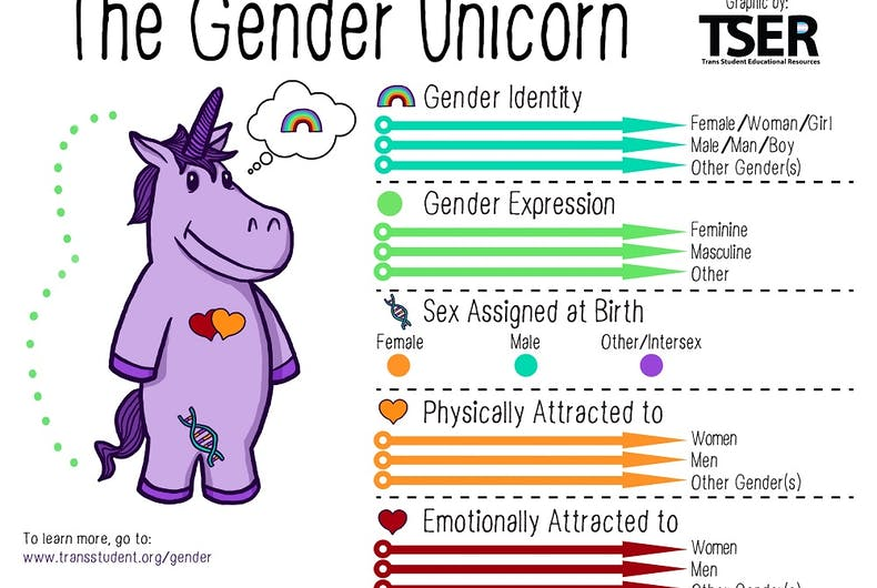 The Gender Unicorn, explaining the differences between sex assigned at birth, gender identity, gender expression, and sexual/romantic orientations.