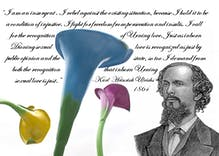 Karl Heinrich Ulrichs was the first gay activist