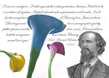 Karl Heinrich Ulrichs was the first gay activist