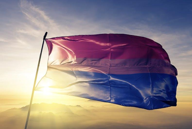 The bi flag