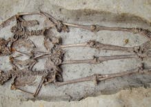 Two ancient skeletons were found holding hands. They were both men.