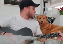 Gus Kenworthy's dog throws him massive shade while the athlete plays guitar
