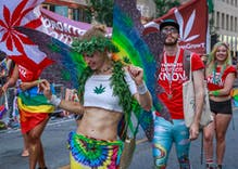 "Americans think marijuana is more ""morally acceptable"" than being gay"