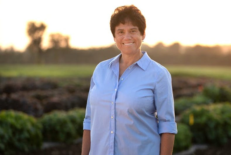 Democratic Candidate For New York District 23, Tracy Mitrano